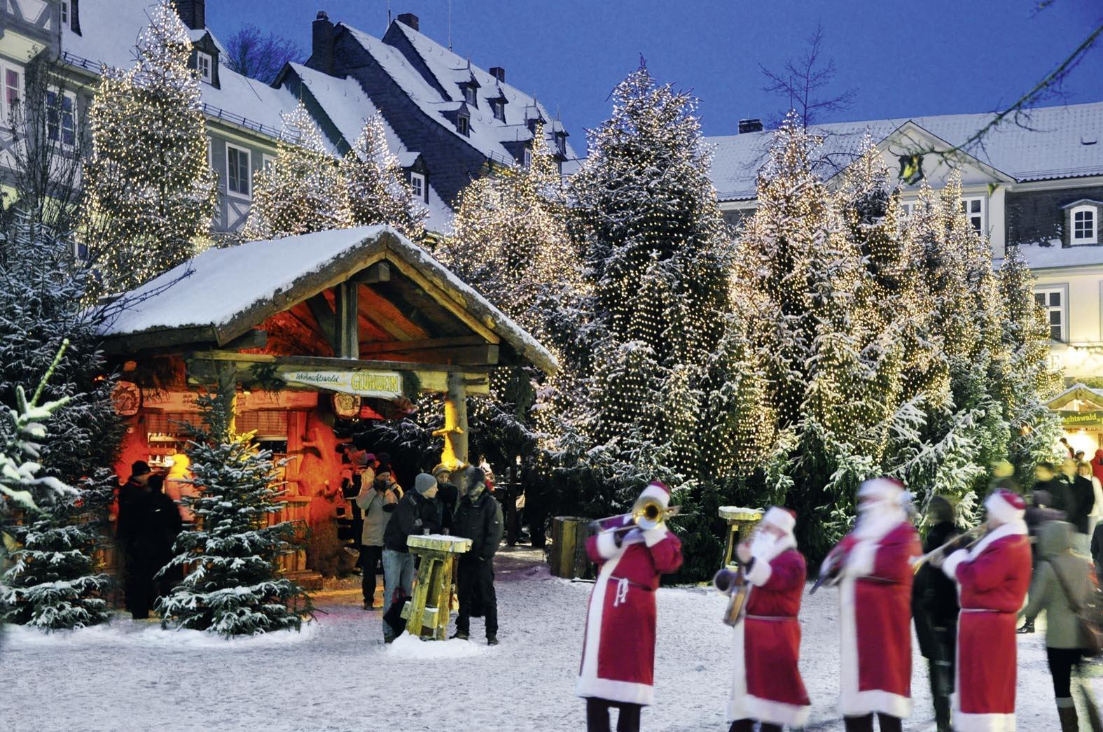 Weihnachtswald auf dem Schuhhof, GOSLAR marketing gmbh