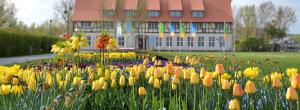 Bürgerpark Wernigerode