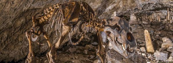 Baumannshöhle ©Jürgen Meusel