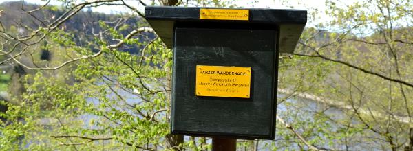 Die Harzer Wandernadel hilft Alina, den Harz auf eigene Faust zu erkunden. © Alina Lipka