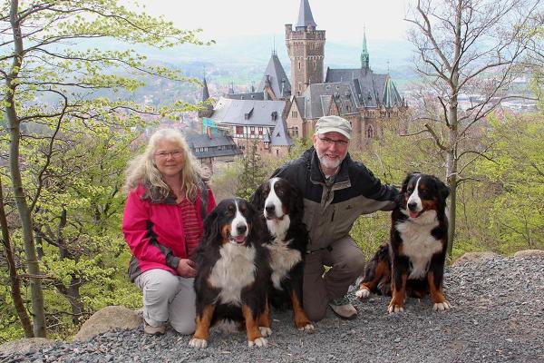 Das komplette Rudel vor dem Schloss in Wernigerode ©Brigitte Lind