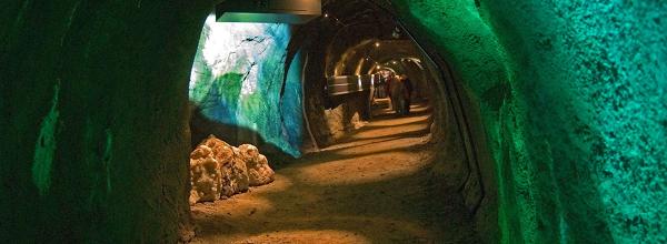 Eintauchen ins ehemalige Riff © HöhlenErlebnisZentrum