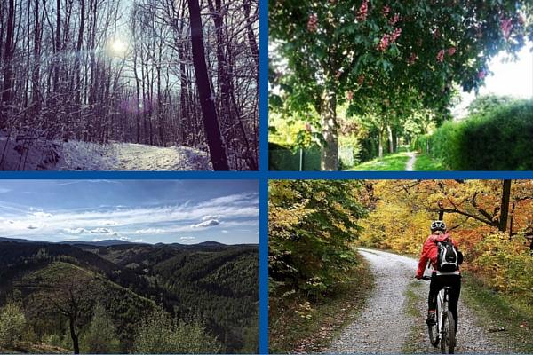Vier schöne Jahreszeiten im Harz ©Anja Leineweber