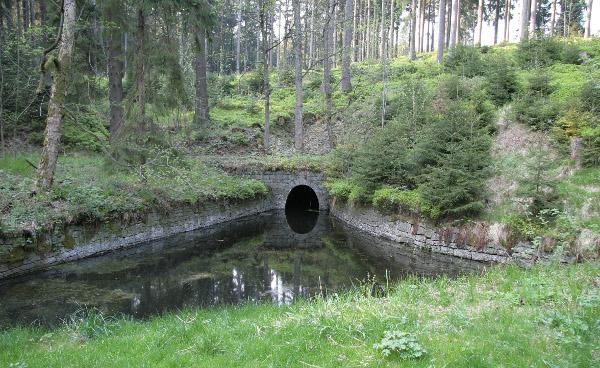 Wasserbecken im Harz