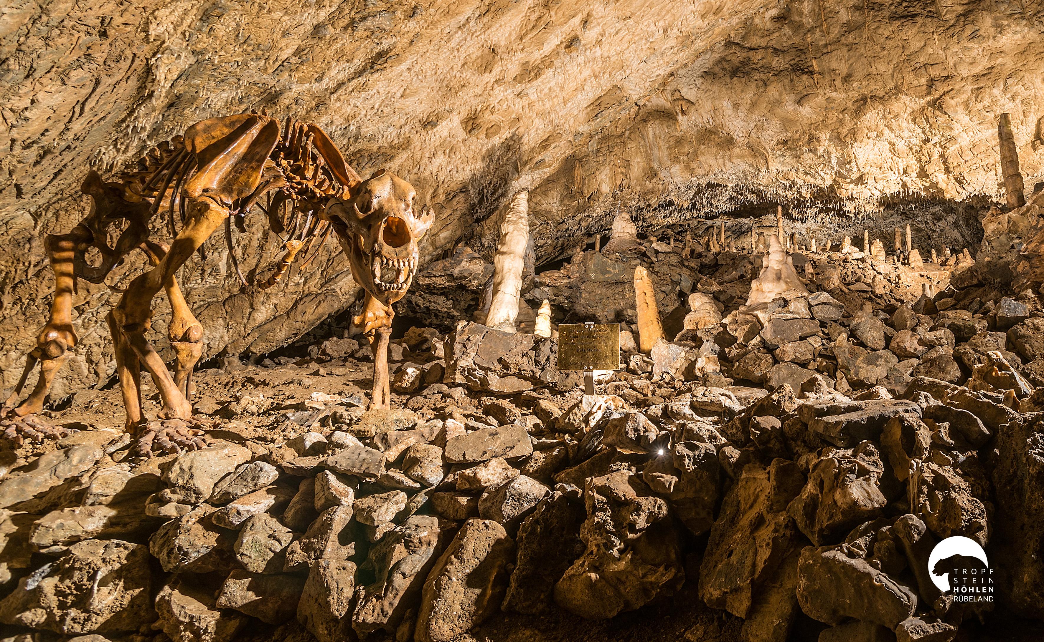 Baumannshöhle Tropfsteine